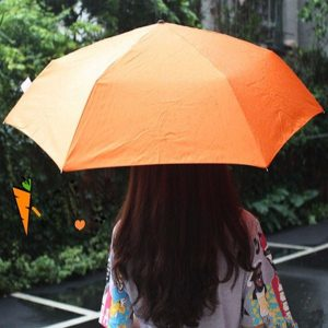 Creative Vegetable Umbrella Simulation Carrot Eggplant Folded Double Sunny Rainy Rain Gear