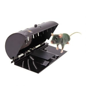 Creative Rat And Rodent Trap Household Catch Rats Mice Or Other Similar Rodents with Ultra Sensitive Trap Cage Efficiently And Safely