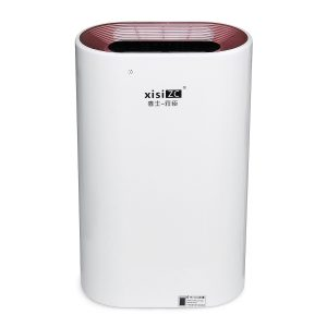 Automatic Home Air Purifier Timing Adjustable 3-Speed Negative-ion HEPA Filter