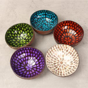 Colorful Peacock Coconut Shell Bowl Dishes Handmade Paint Craft Art Snacks Bowl Home Decor