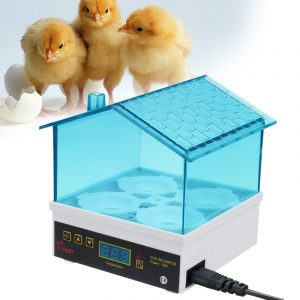 220V Auto Poultry Incubator 4 Egg Incubator Capacity Turning Hatcher Temperature Controls