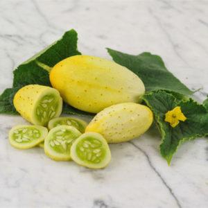 Egrow 100 st / pack mexikanska sura gurkinfrön gurka vegetabiliska växter