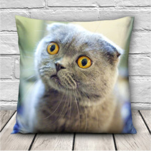 3D söta uttryck Katter Kuddfodral Soffa Kontor Bil Kuddfodral Gåva
